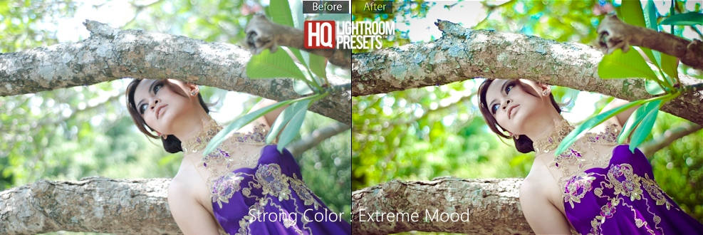 20-best-free-lightroom-presets
