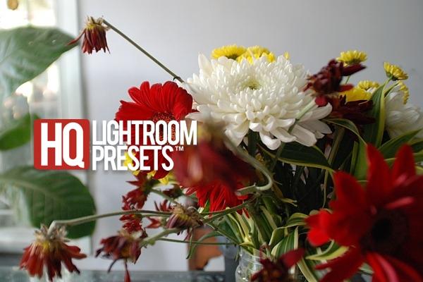 цветок-SET-фотография