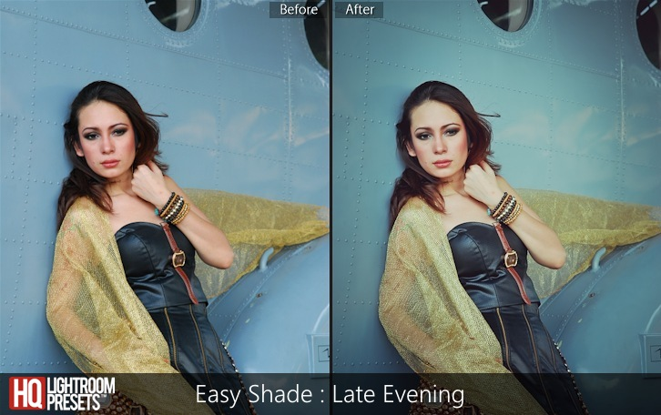 lightroom presets-Easy Shade - Late Evening