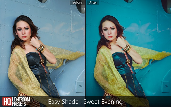 lightroom presets-Easy Shade - Sweet Evening
