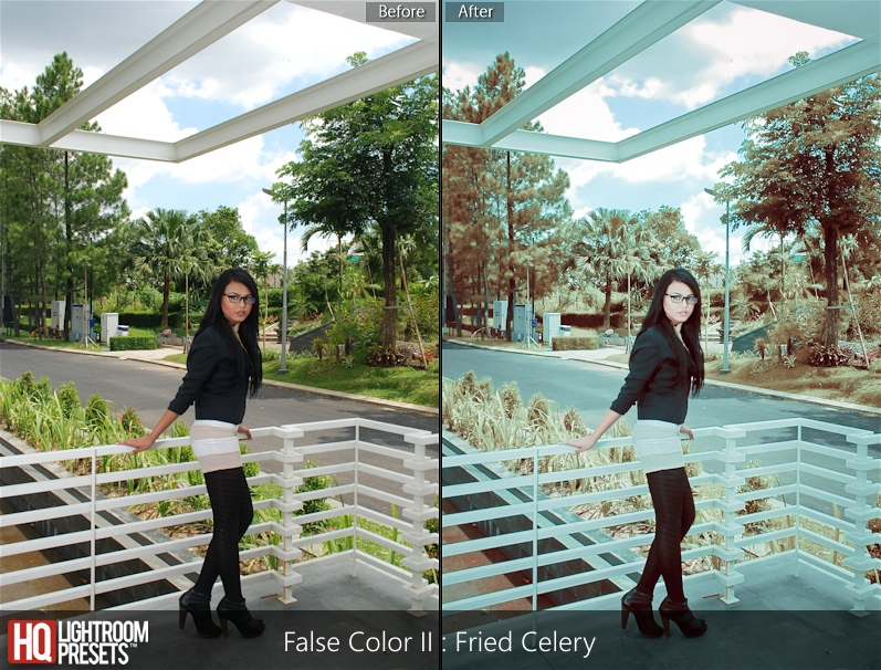 false color lightroom presets 5 free