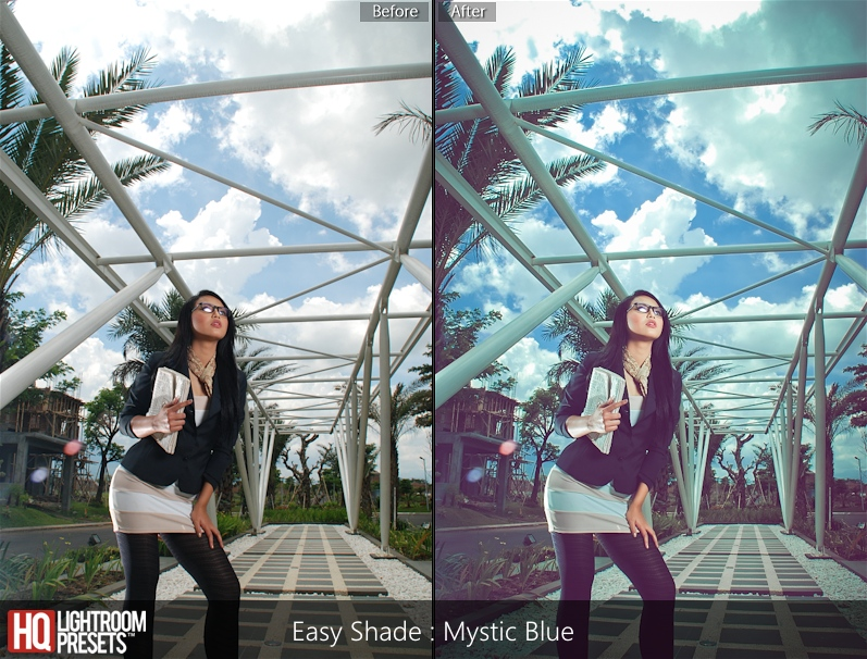film presets lightroom 5