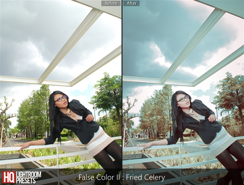 lightroom presets 4
