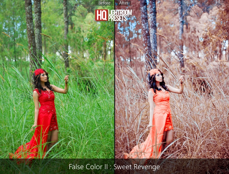 lightroom presets-false-color