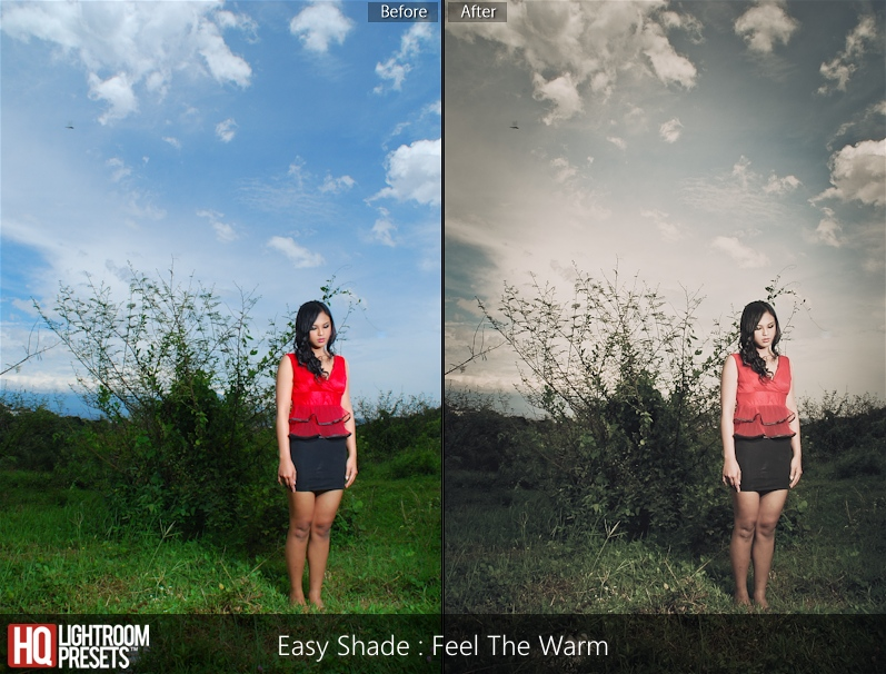 shade effect lightroom presets 4 pastel