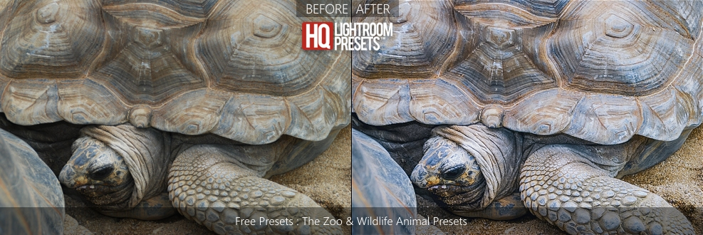 wildlife-animal-presets