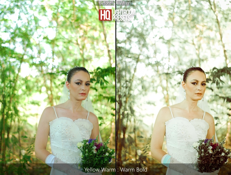 100 presets lightroom for wedding