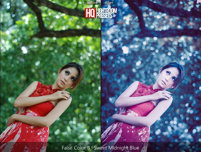 lightroom 3 false color presets