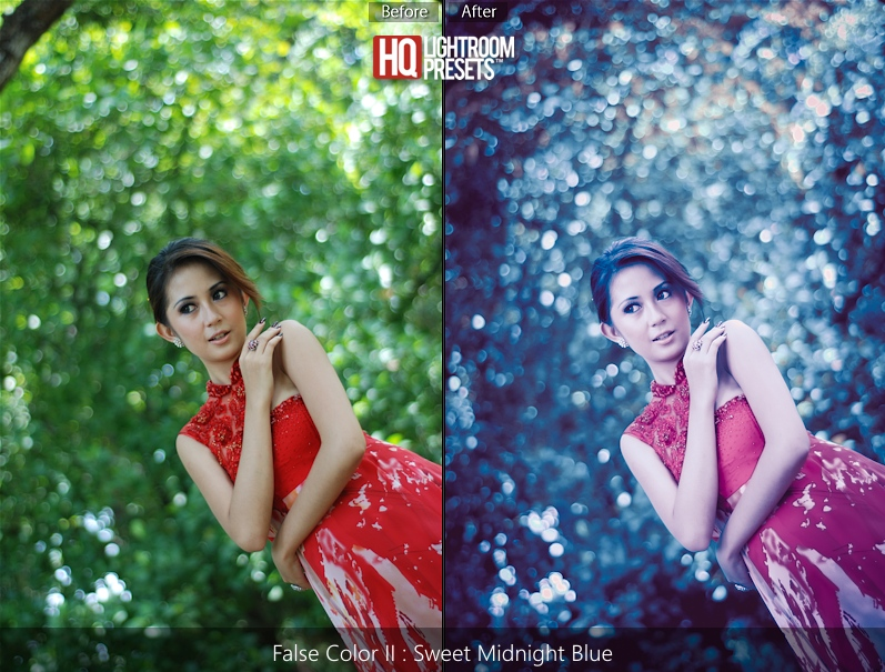 lightroom 4 false color presets
