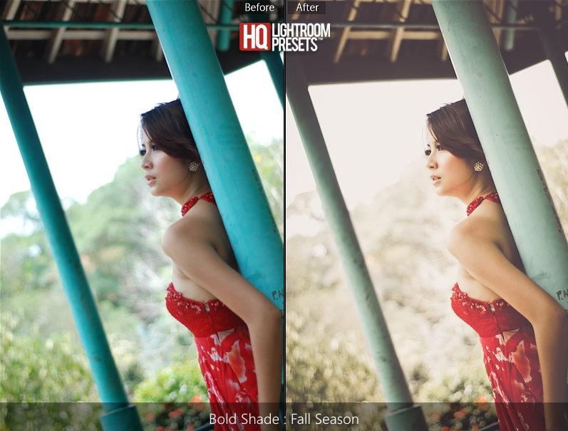 presets de Lightroom 5