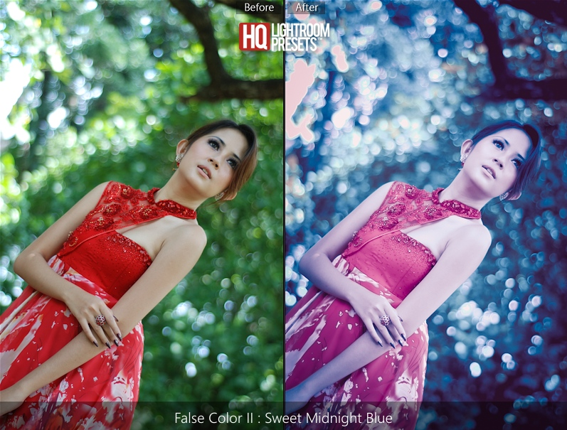 lightroom false color presets