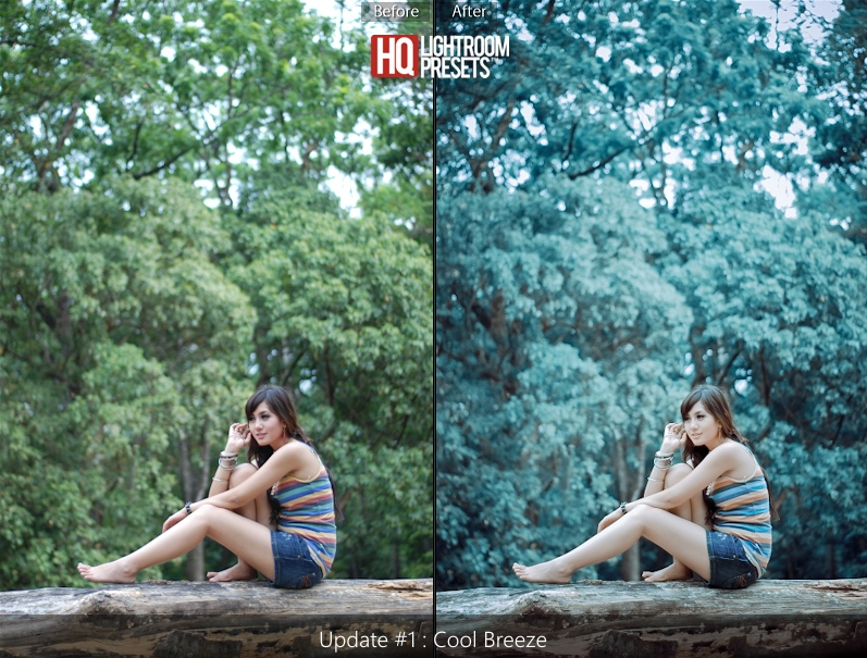 lightroom-presets-5-free