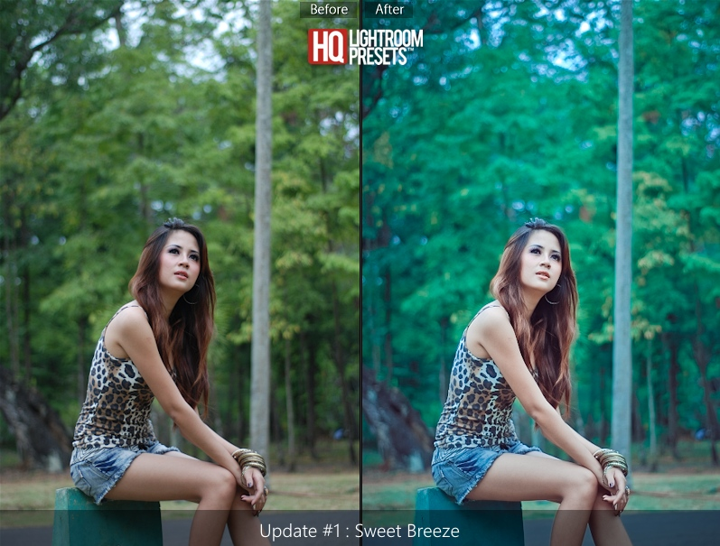 lightroom presets 5