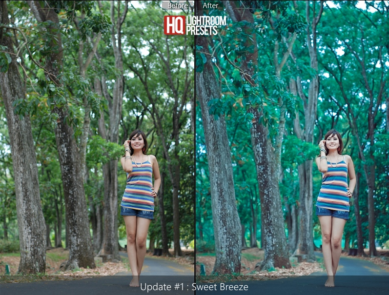 lightroom4 presets