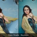 lightroom presets-Easy Shade - Reunion