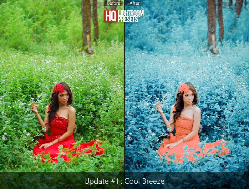 cool lightroom presets
