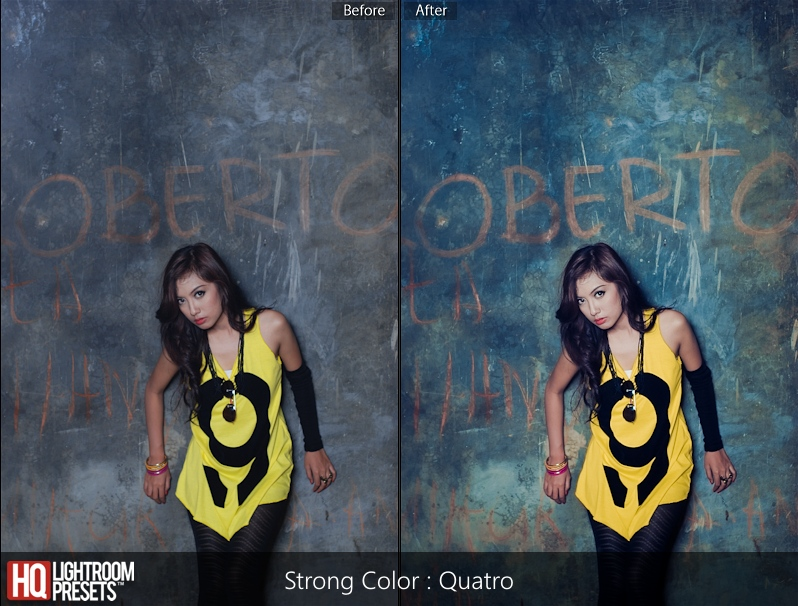 Quantro lightroom presets