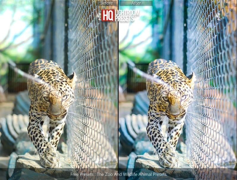 tiger-color-presets