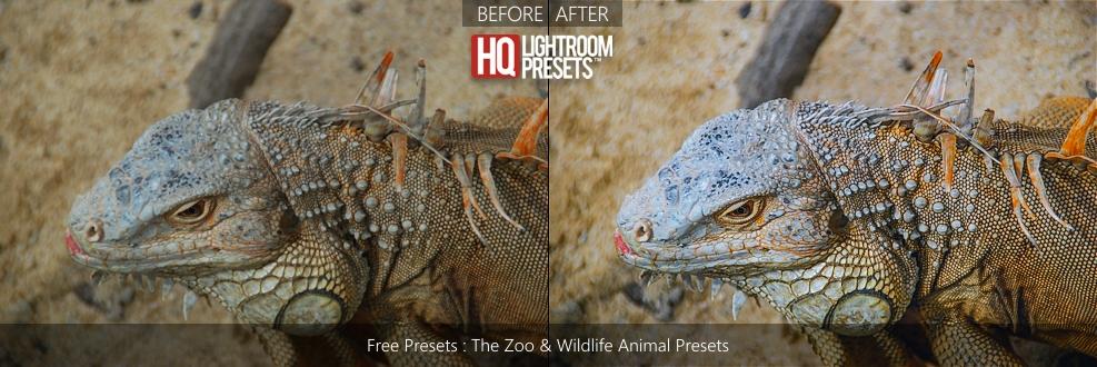 wildlife-presets