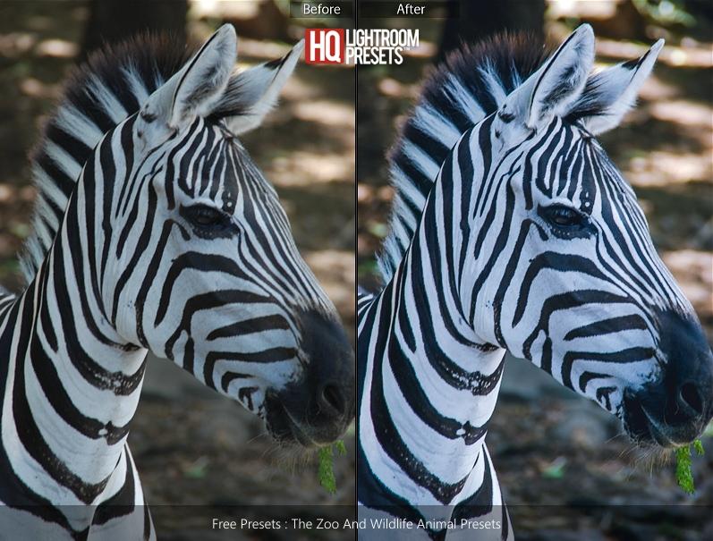 zebra-presets