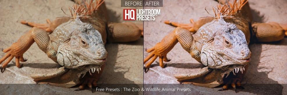 zoo-presets
