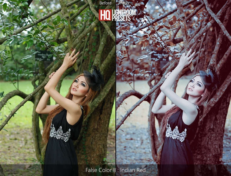 false color tone ligtroom acr presets