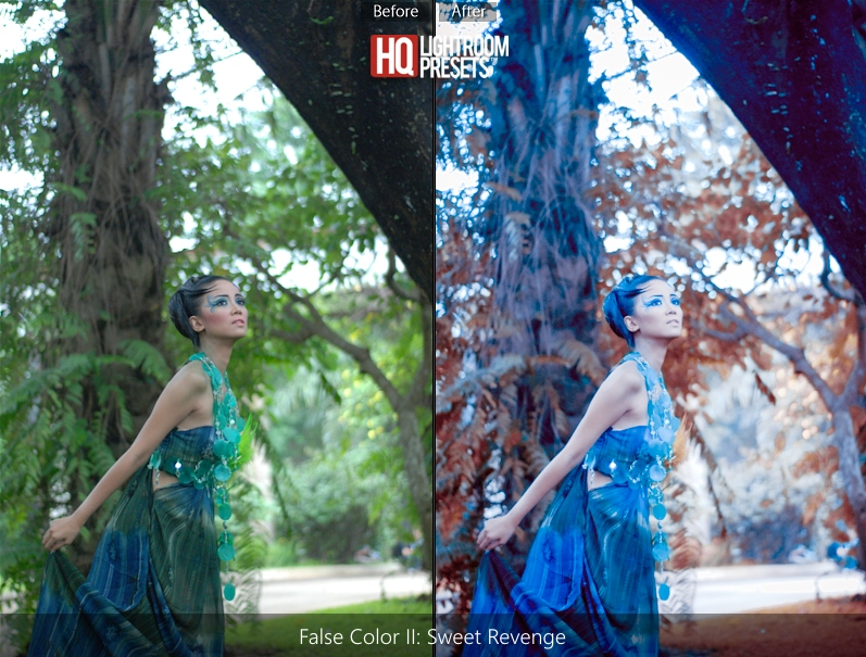 infra red tone presets