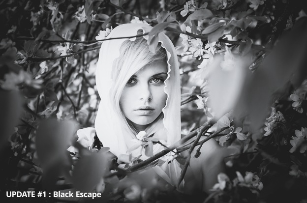 black-and-white-presets