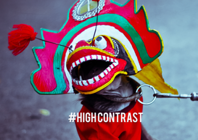 # High Contrast Lightroom Presets Set  : 15 Lightroom Presets