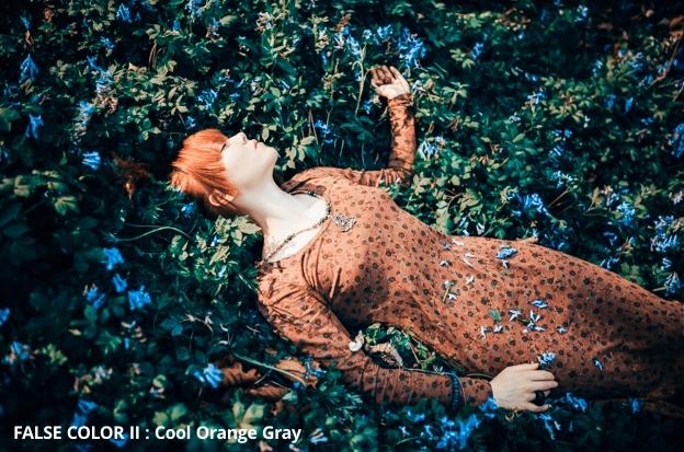 fantasy-false-color-presets